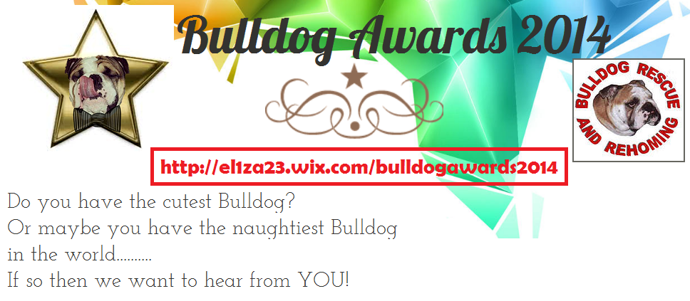 BULLDOG_AWARDS_14