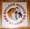 BULLDOG RESCUE COASTER